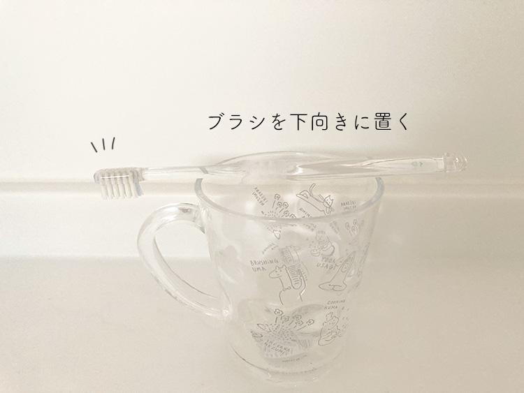 歯ブラシの置き方
