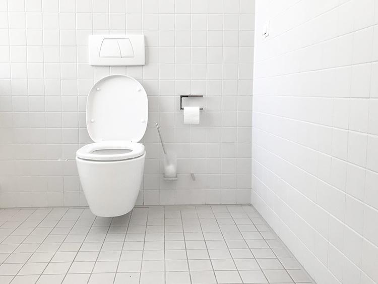 ハッカ油でトイレ掃除
